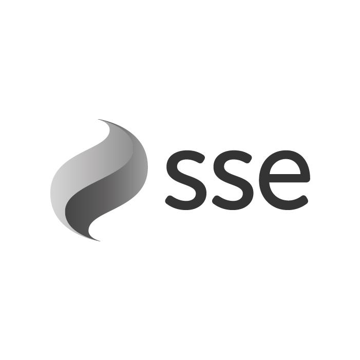 SSE-100.jpg