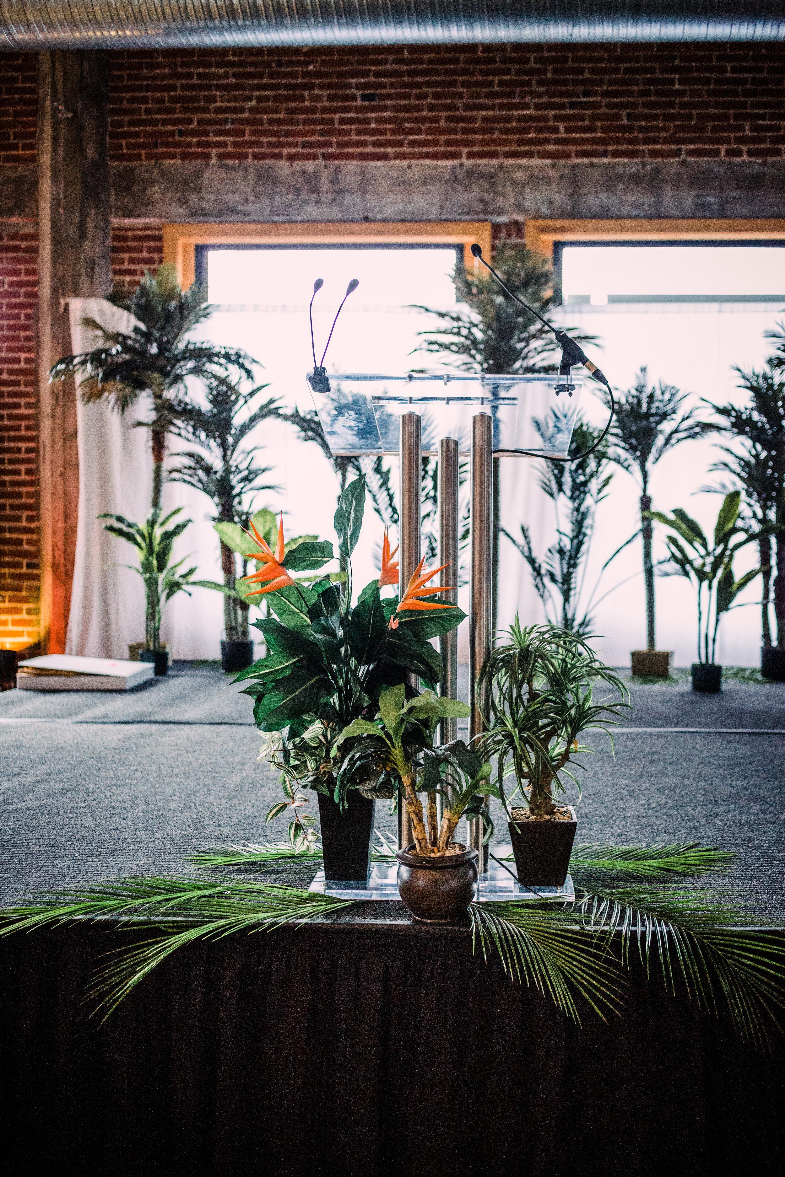 Island silk palm trees