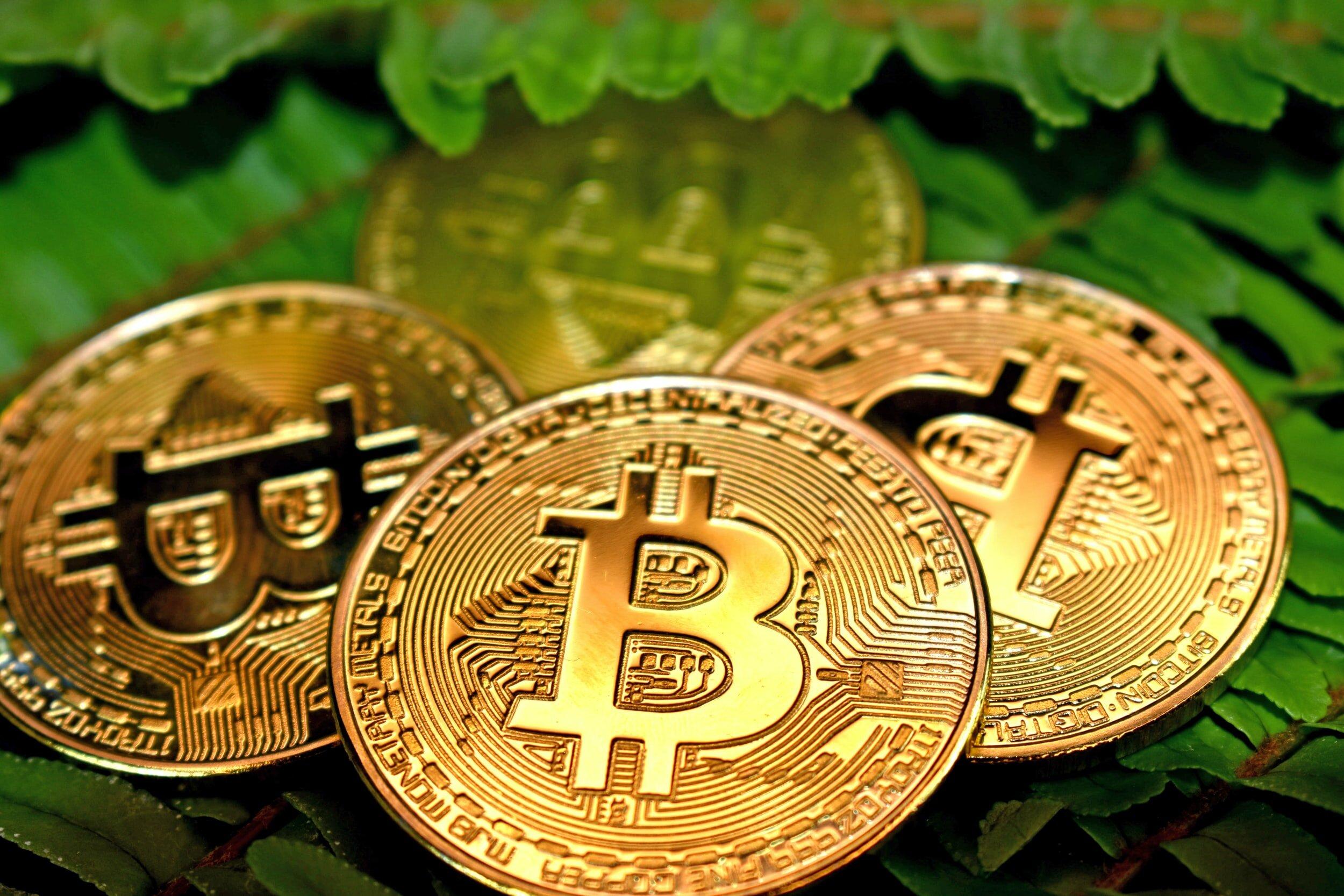 forex broker di criptovaluta wapserv bitcoin