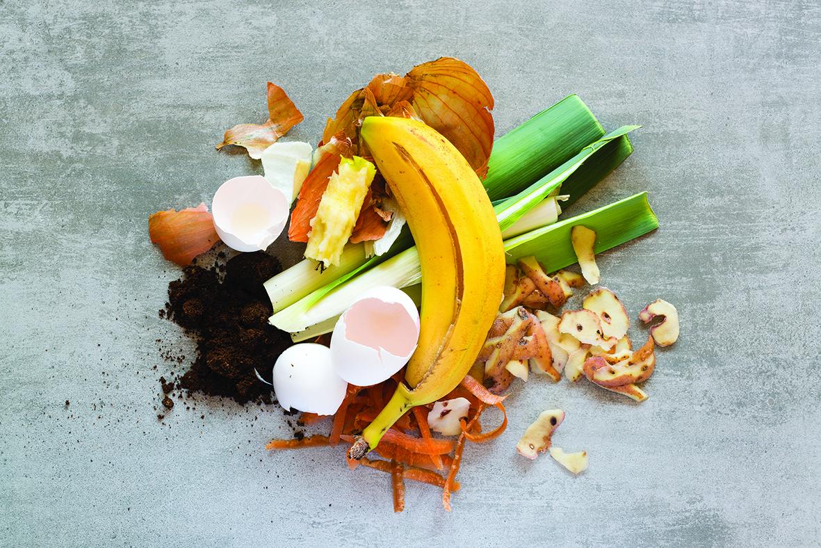 bigstock-Organic-Waste-To-Make-Compost-181232569.jpg