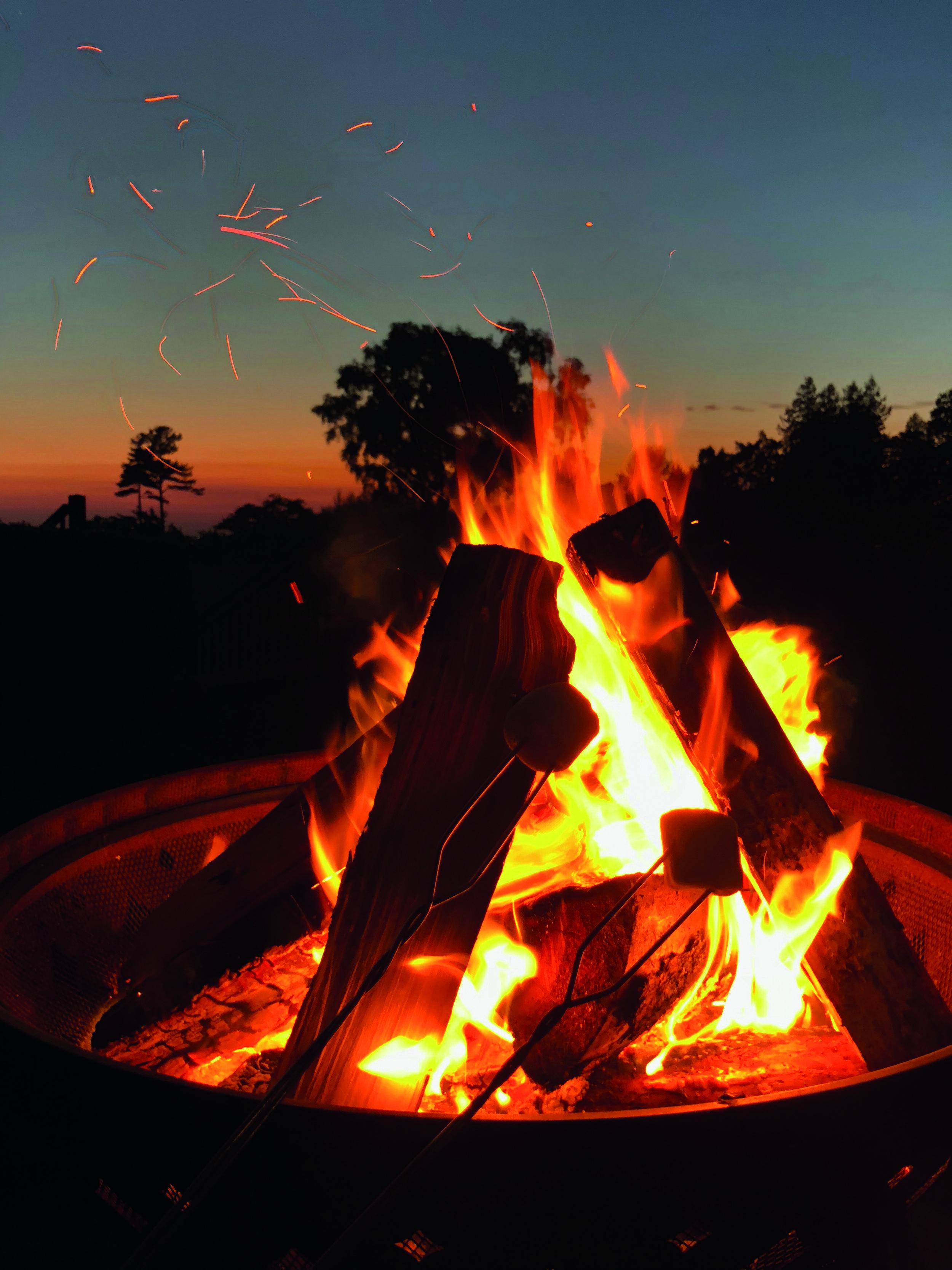 bonfire-burn-burning-1434598.jpg