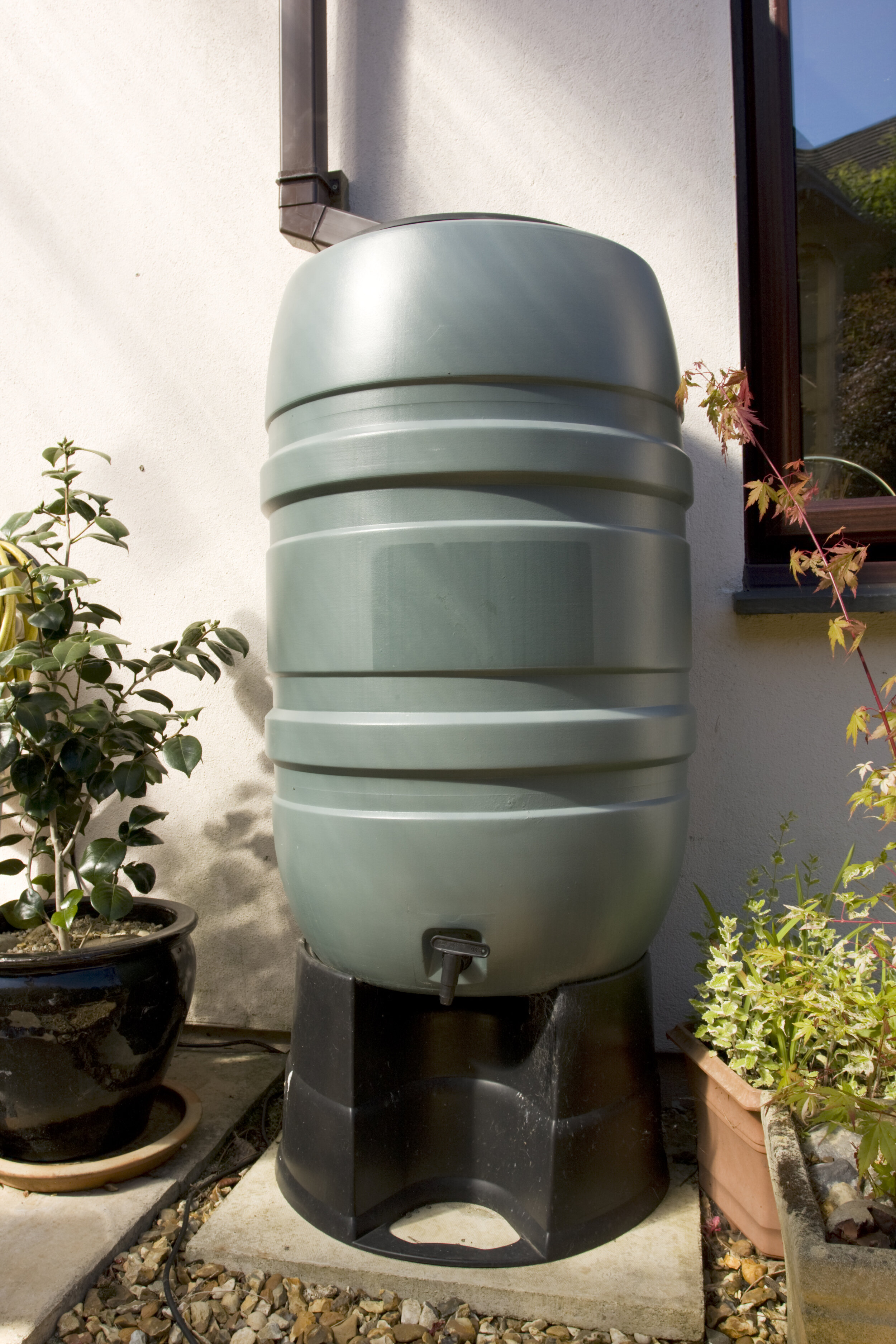 bigstock-Water-Butt-3396781.jpg