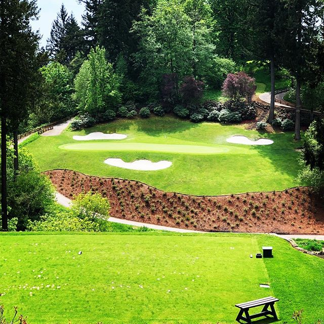 A bad day on the golf course is never really a bad day. 🏌🏿‍♂️⛳️ #momentforme  #portland #pdxlife #pdxlove #oregonliving #oregonlife #pdxrealestate #portlandoregon #portlandnw #portlandeats #portlandpdx #portlandhomes #portlandtattoo #portlandbeer #smallbusiness #lakeoswego #beavertonoregon #bendoregon #portlandrealtor #realestateagent #oregonrealestate #realestateagent #portlandwedding #portlandfashion #portlandbride #portlandfoodies #entrepreneur #branding #personalbranding #mediarelations #pr