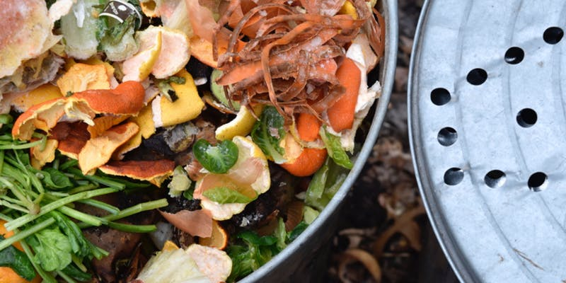 food waste photo.jpg