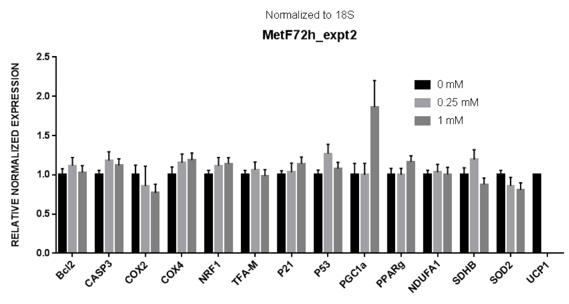 Figure 1. qPCR Data from concentrations 0.0mM, 0.25mM, and 1.0mM, normalized to 18s.