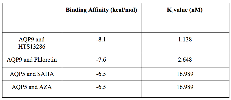 Table 1.  Binding affinities and Ki values.