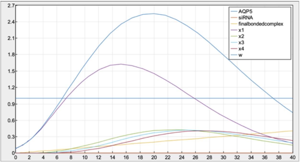 Figure 3.  MATLAB Model of Tumor Growth (AQP5 and SAHA).