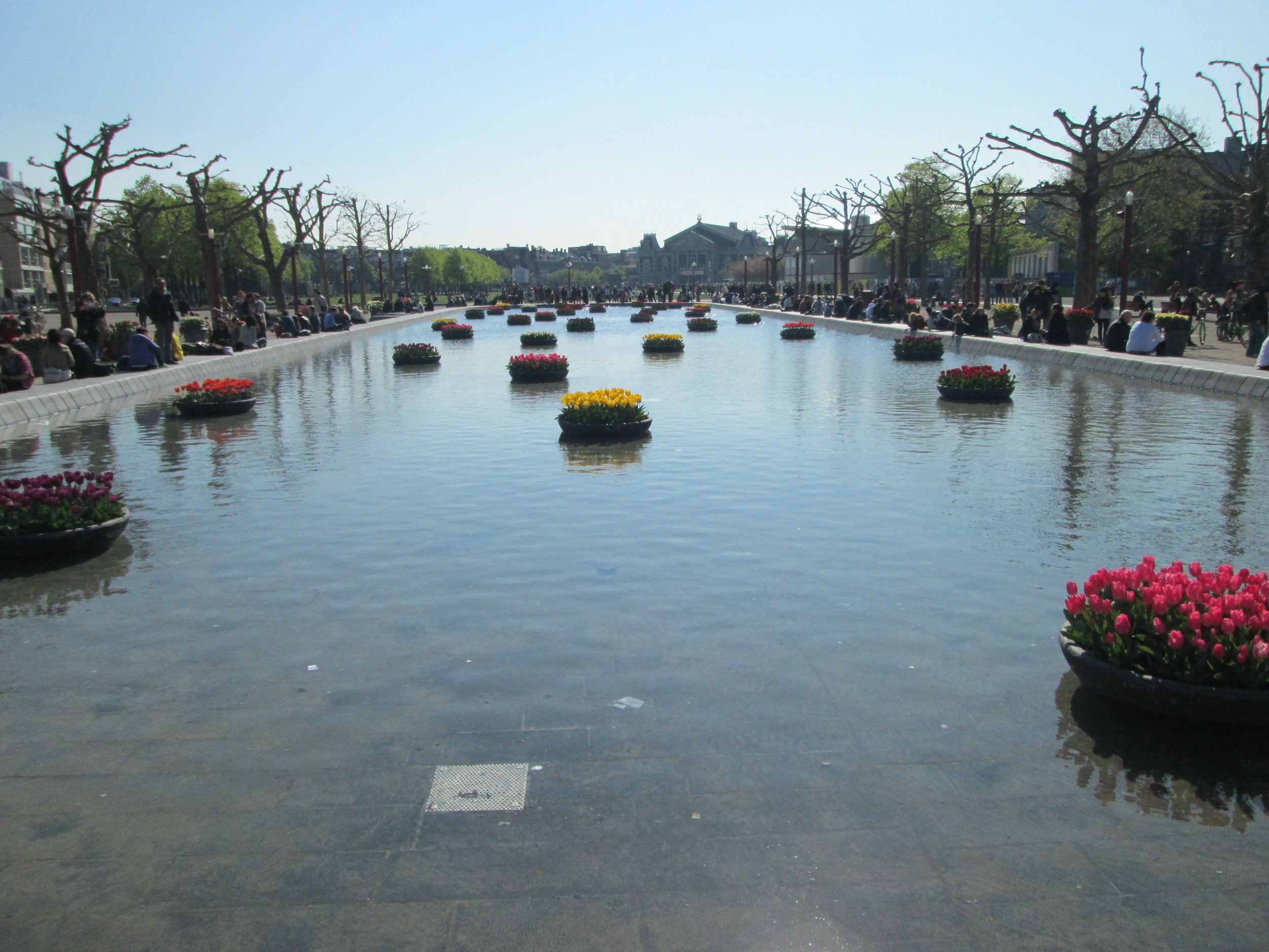Rijksmuseum pond in the springtime! Filled with water and tulip planters.