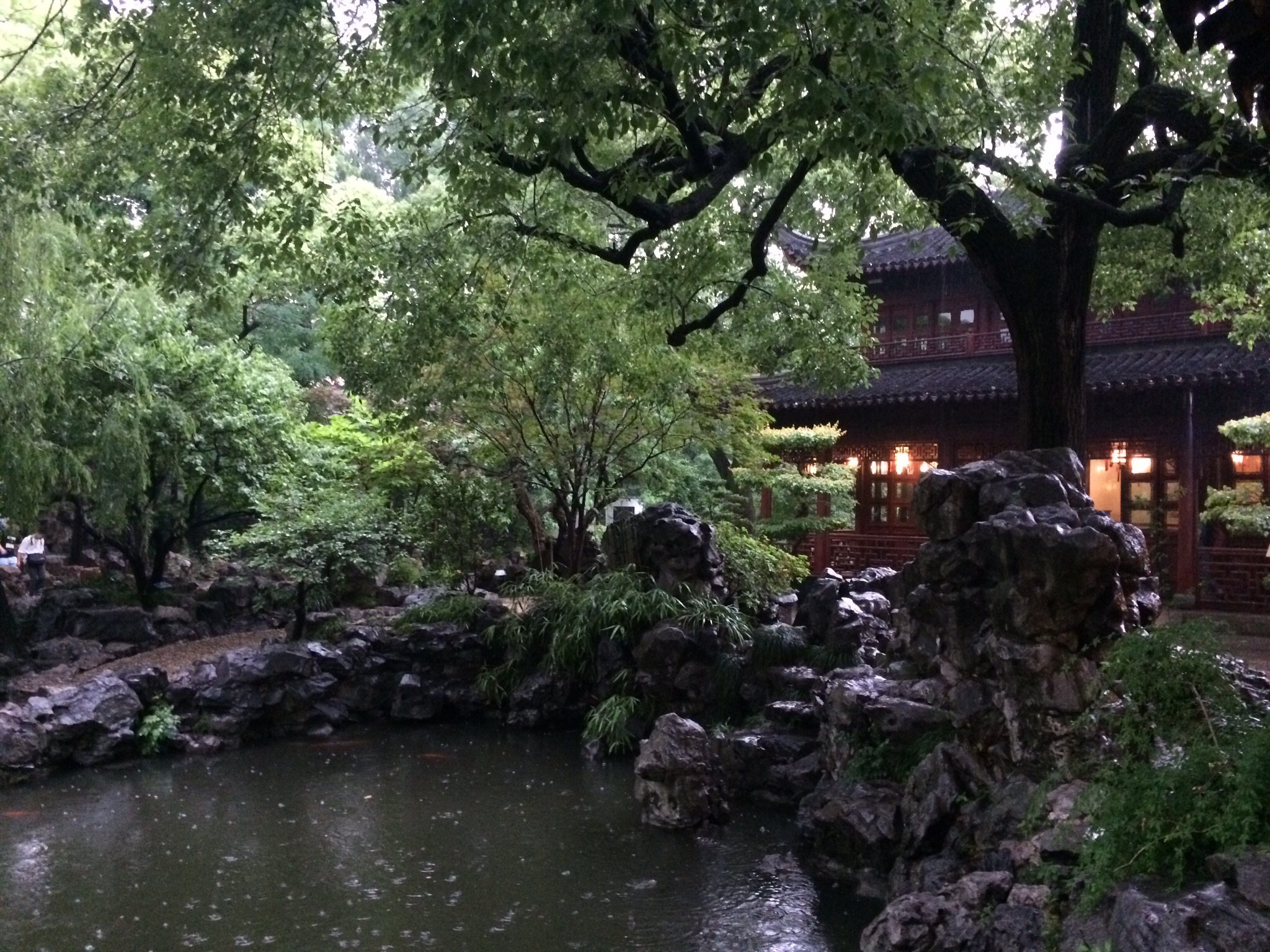 You can kind of see the rain drops falling in the koi pond. Doesn't even compare to the lighting & thunderstorm that came next.
