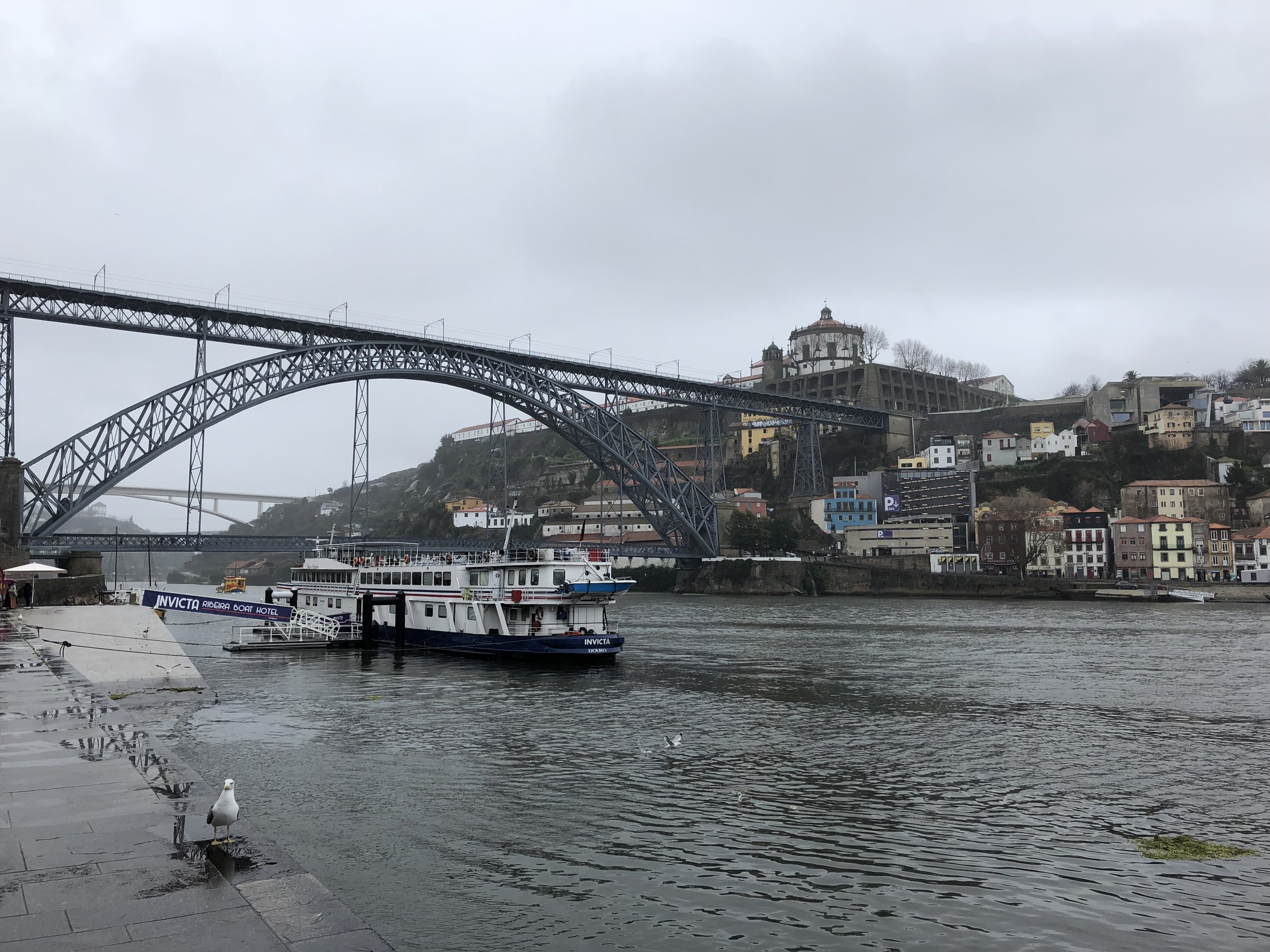 Ponte Dom Luis I over the Duoro river. This was an architectural feat at it's time of construction & remains an icon of Porto.