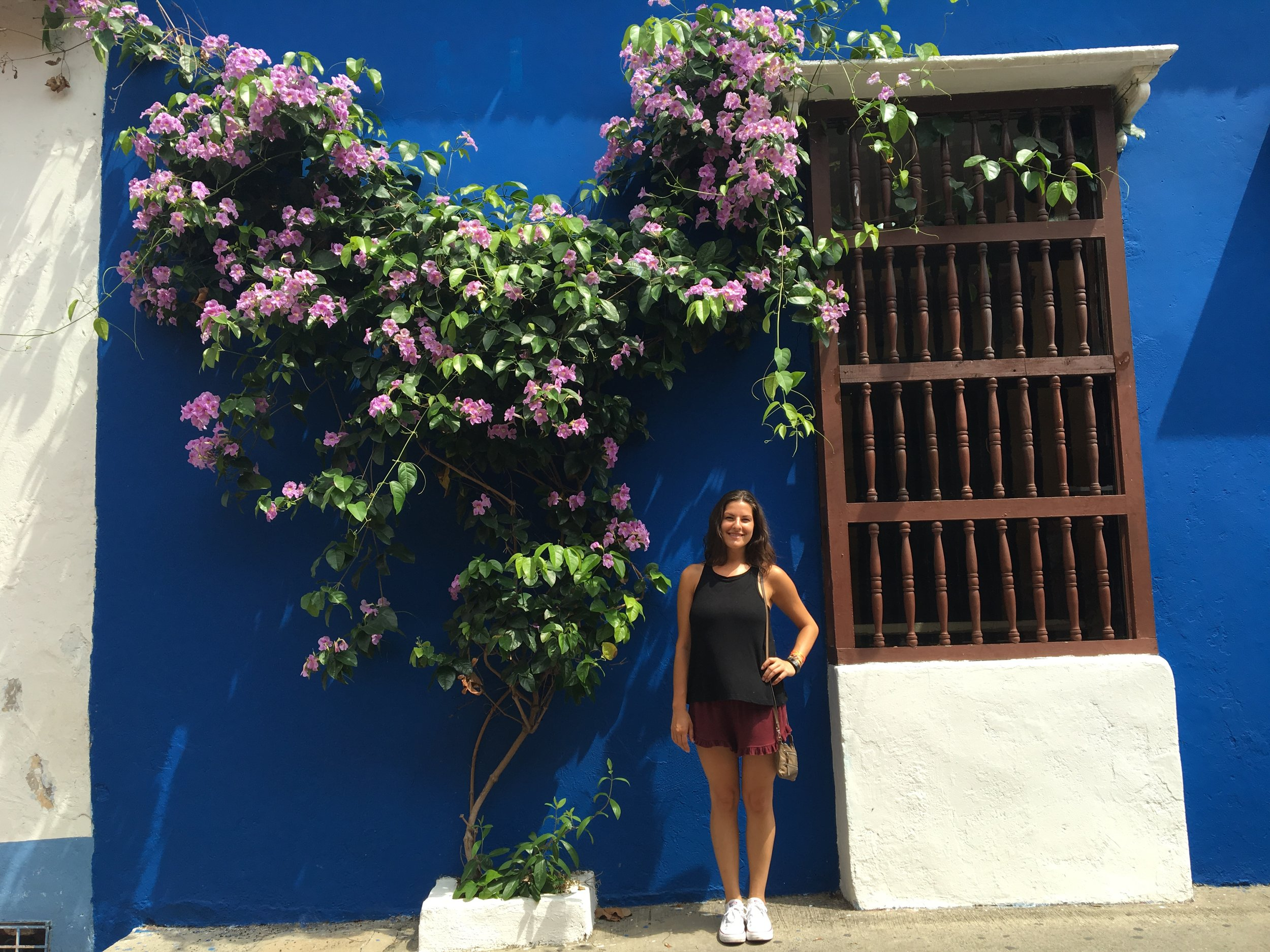 I cant tell you how joyous these colorful walls and huge plants made me !!