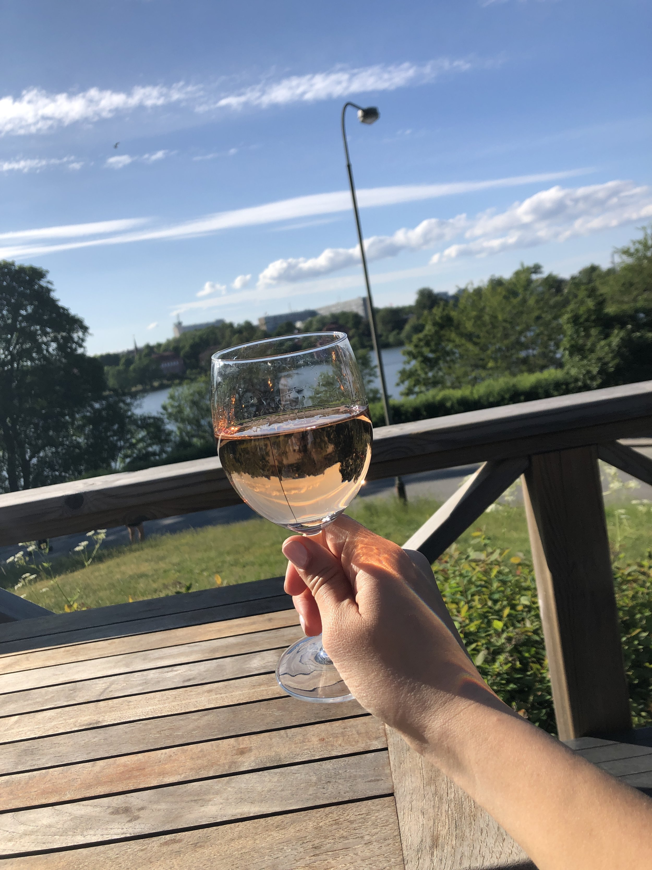 Cheers to another sunny day in Stockholm. We spent the afternoon exploring the Djurgarden near most of the city's museums.