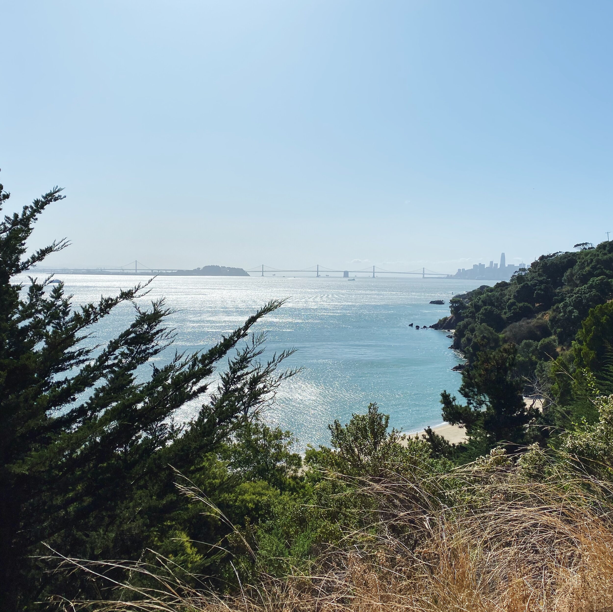 A view of the Bay Bridge from Angel Island.