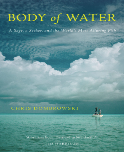 body of water cover.png