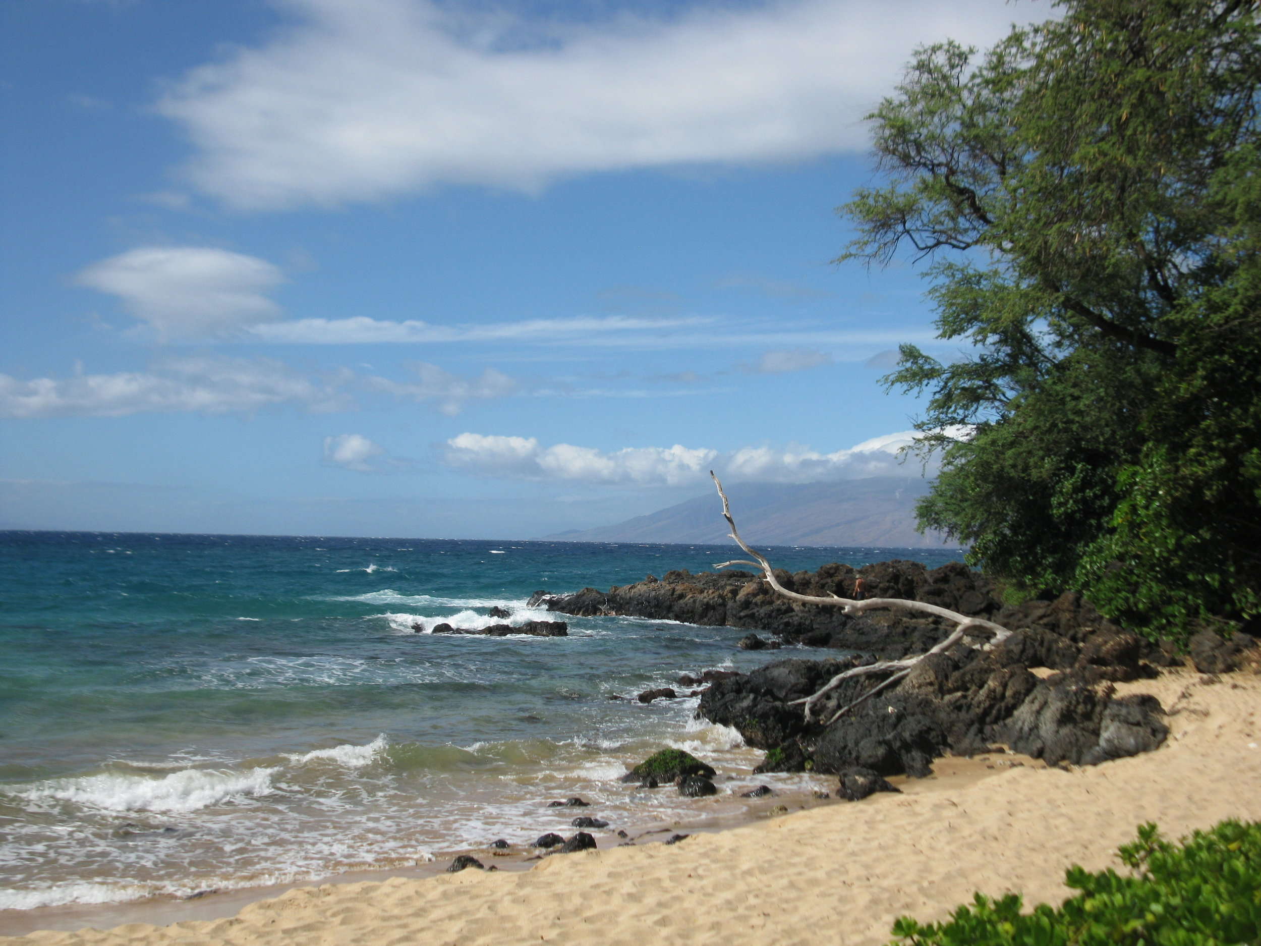 Maui...the beautiful Island where it all came together for me!