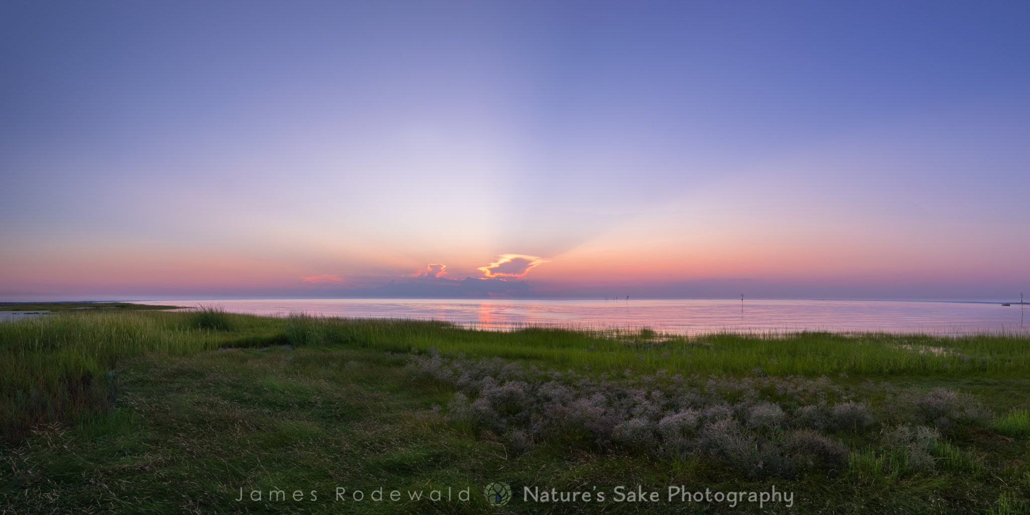 """""""Evening on Cape Cod Bay"""" to benefit Association to Preserve Cape Cod"""