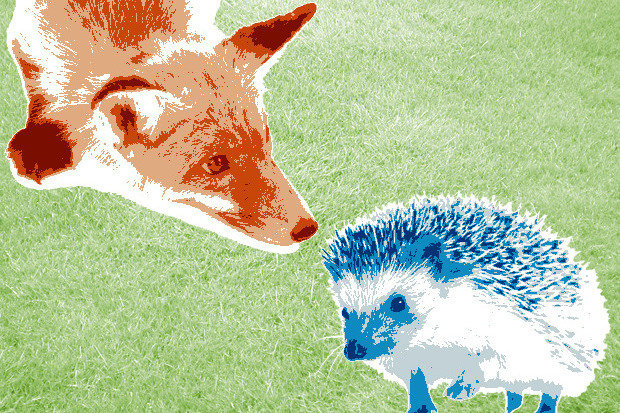 fox_hedgehog.jpg