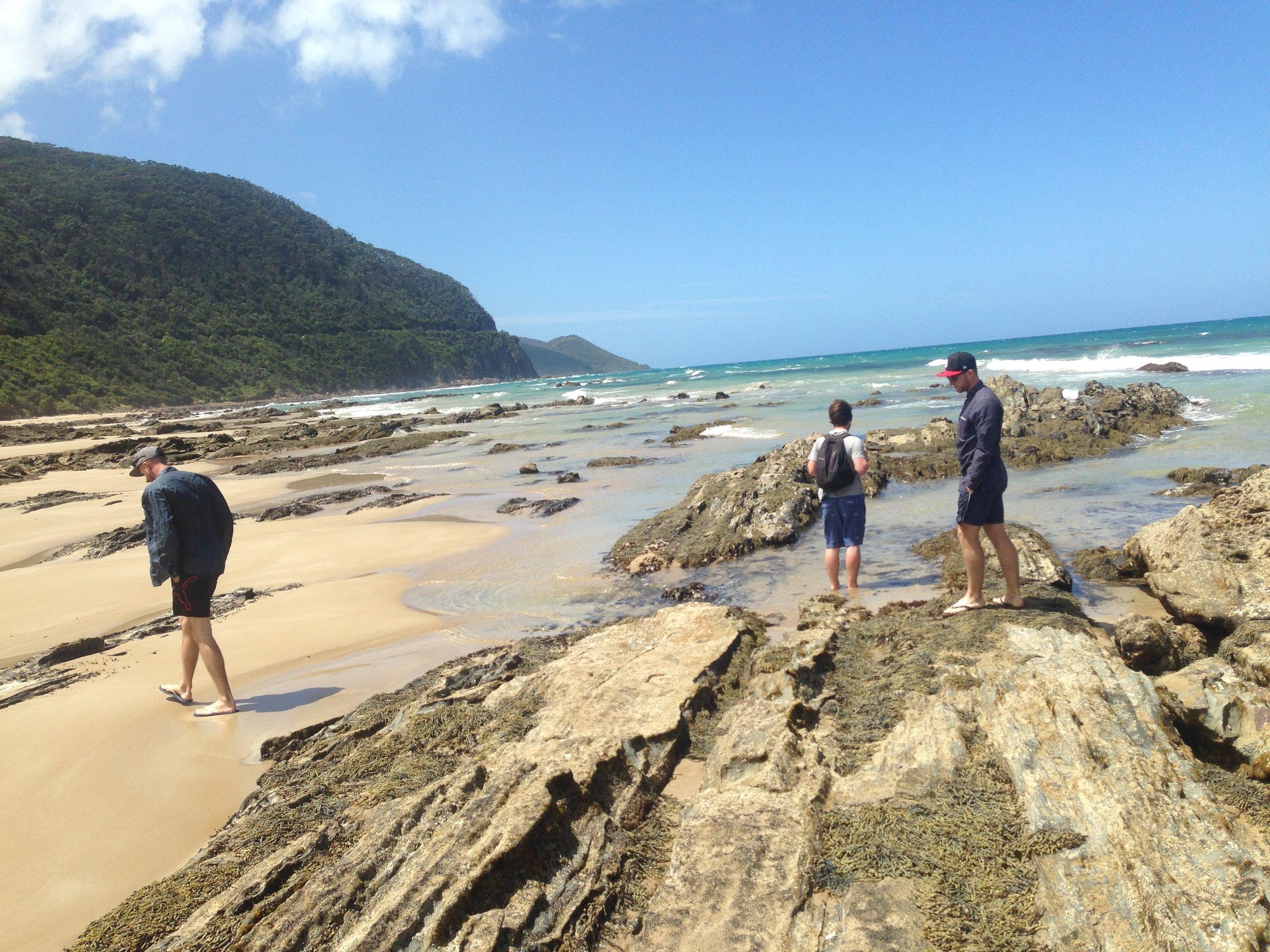 Exploring the great ocean road...