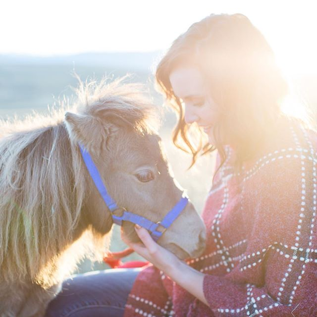 Photographing seniors together with horses never gets old. Each brings a glow and beauty out of the other when they're near, and this bond is always so special to witness. This senior and her horses (including the cute miniature one) were no exception. Thanks for hanging in there, Emily, with the hiking, horses, and all! . . . #seniorphotos #intimateportraitsllc #lifeintoart #sheridanseniorphotographer #seniors2018 #classof2018 #horses