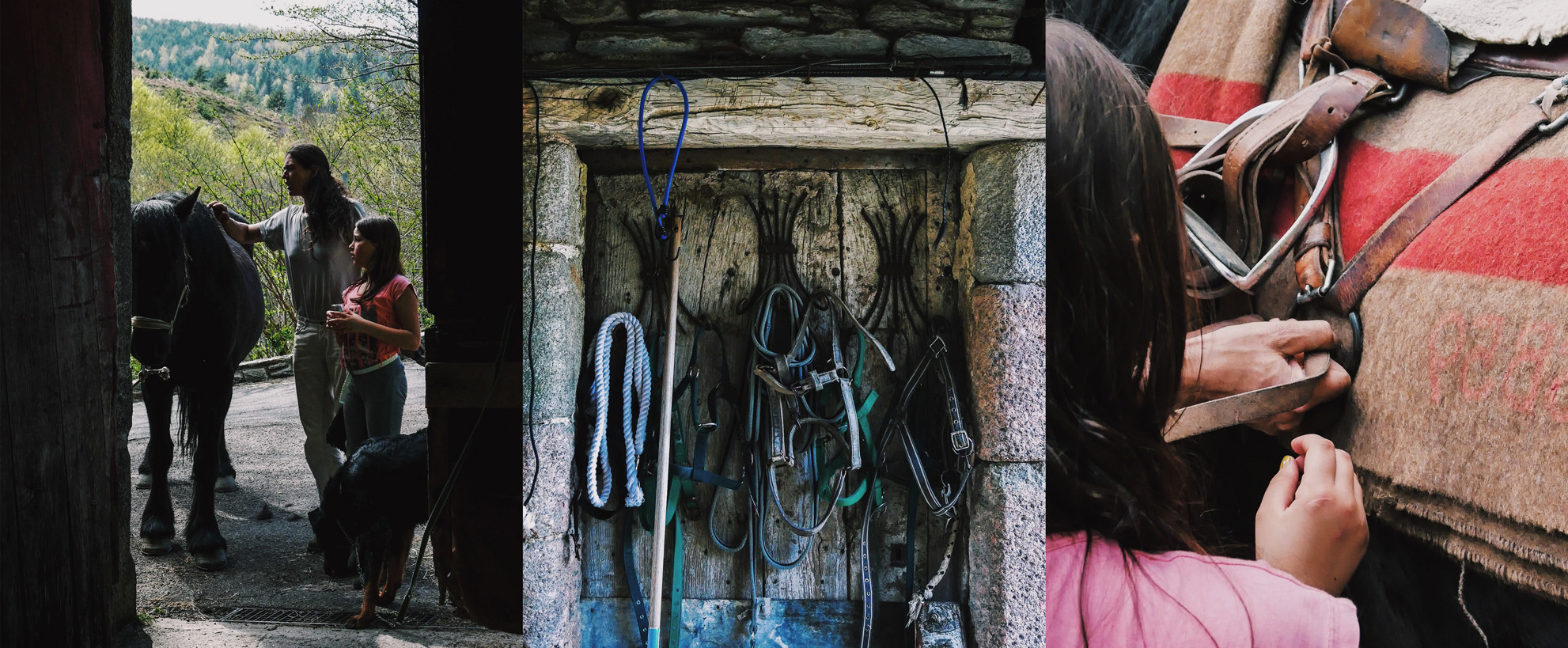 Week-end cheval au Mont Lozère dans les Cévennes