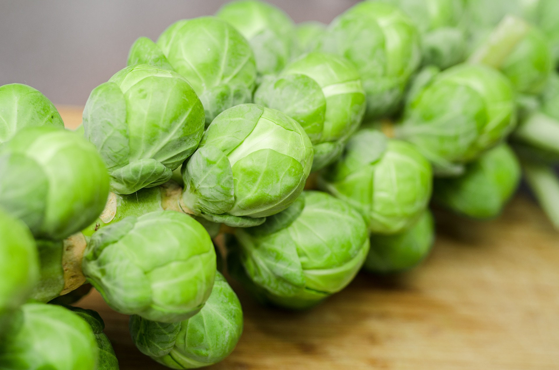 Do you really like sprouts?!