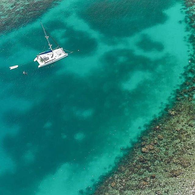 Happy World Ocean Day! Let's all do our part to protect this planet 💙 . . . . #roatan  #passionpassport #natgeogoblue #islandsofadventure #travelcouple #snorkelling #seetheworld #traveladdict #roamtheplanet #onvacation #yacht #awakethesoul #islandlife #roatanisland  #travelkids  #suitcasetravels #travelstoke #travelandleisure  #familytravel #travelawesome #islandhopping #bbctravel #sailaway #traveldeeper #luxurytravel #lonelyplanet #beachlife #travelbug