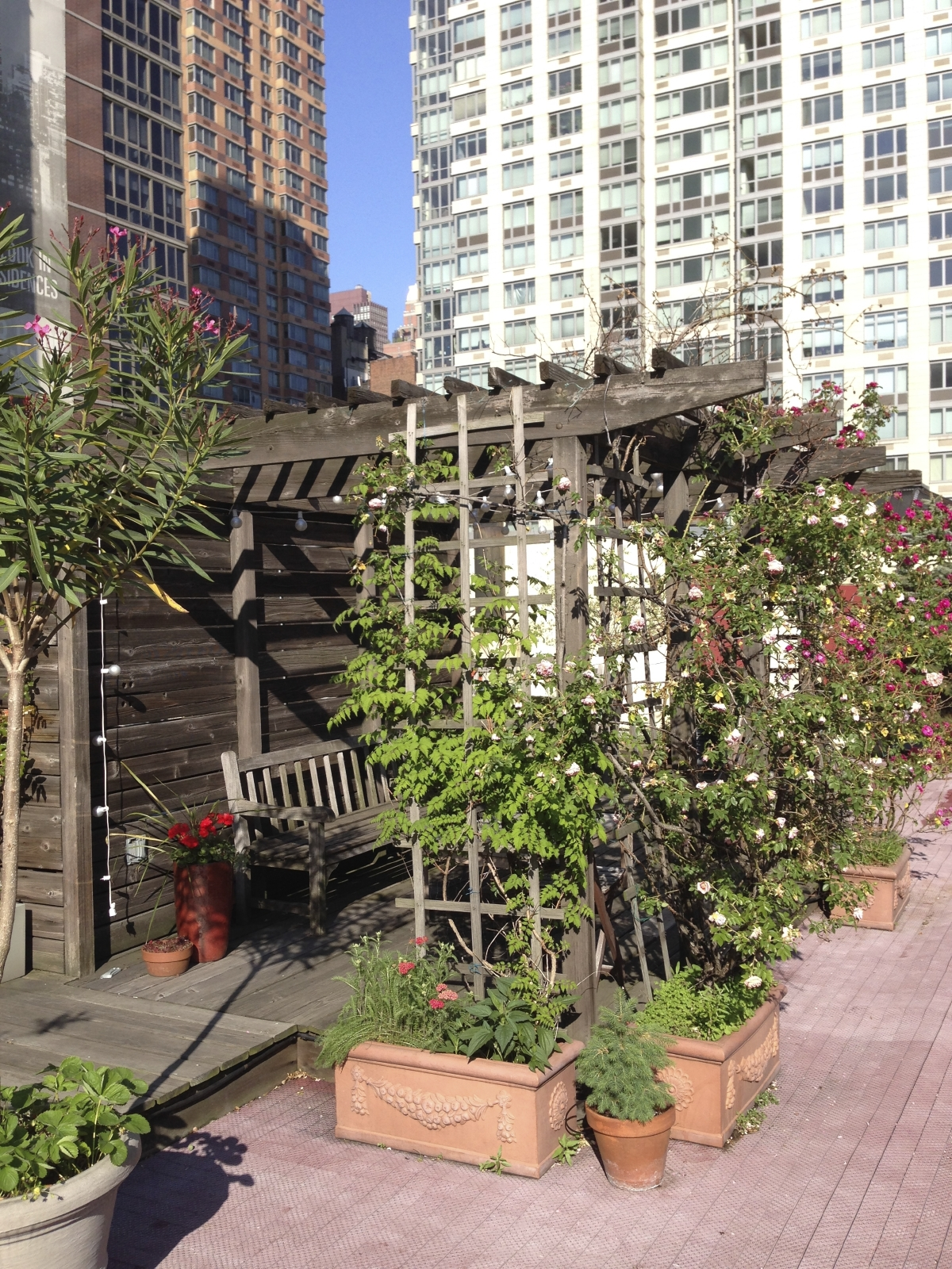 urban-gardens.jpg