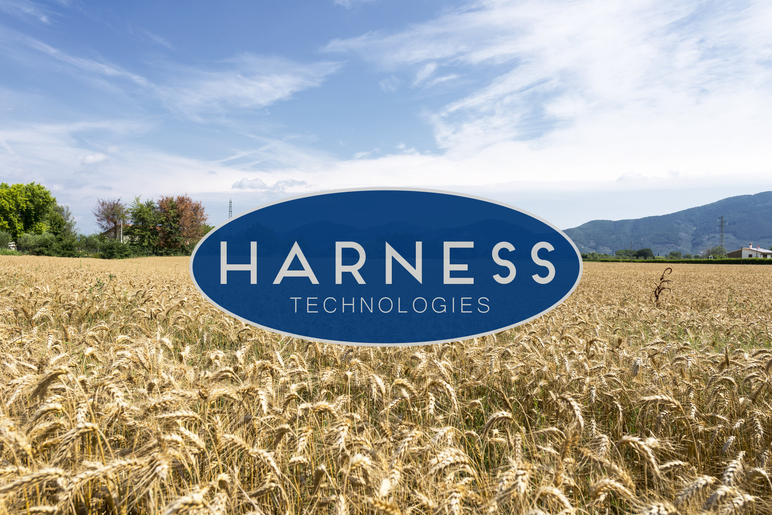 Harness Header Image_Small.jpg
