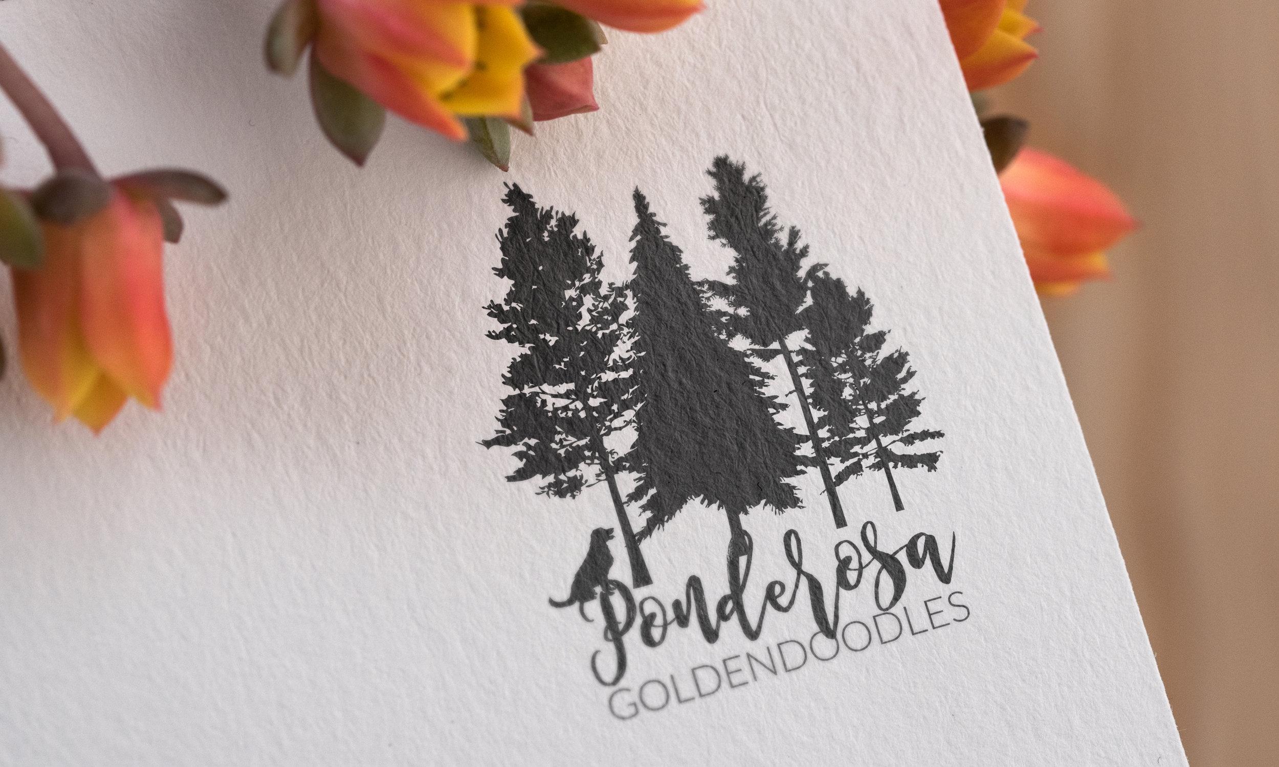 PonderosaGoldendoodles_Mockup_Logo.jpg