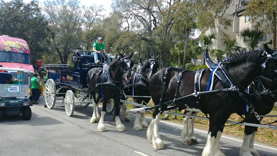 express clydesdales.jpg