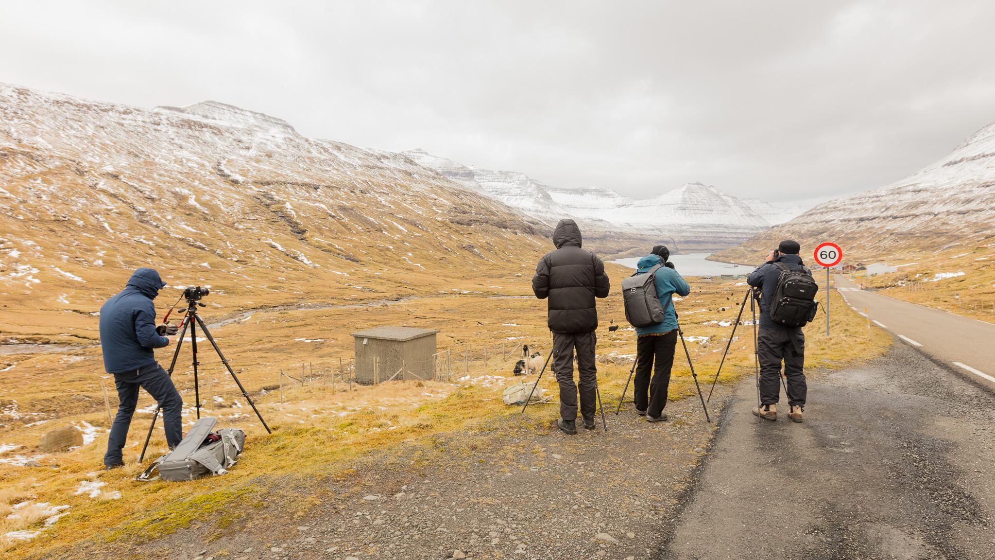 Faroe-Islands-Workshop-2017-NorthernWorkshops-1-7.jpg