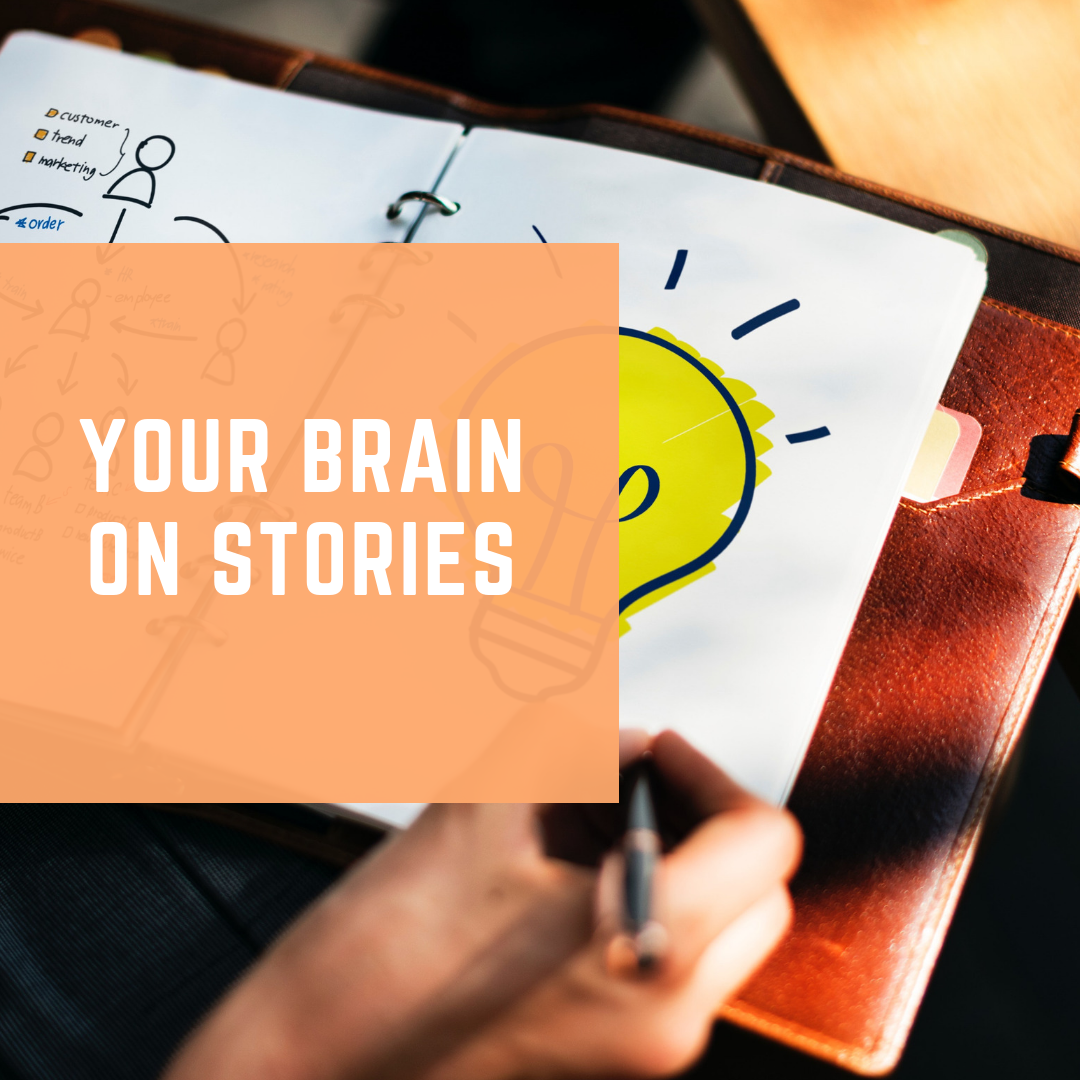 - Uncover how stories shape your brain and the relationship you have with your audience