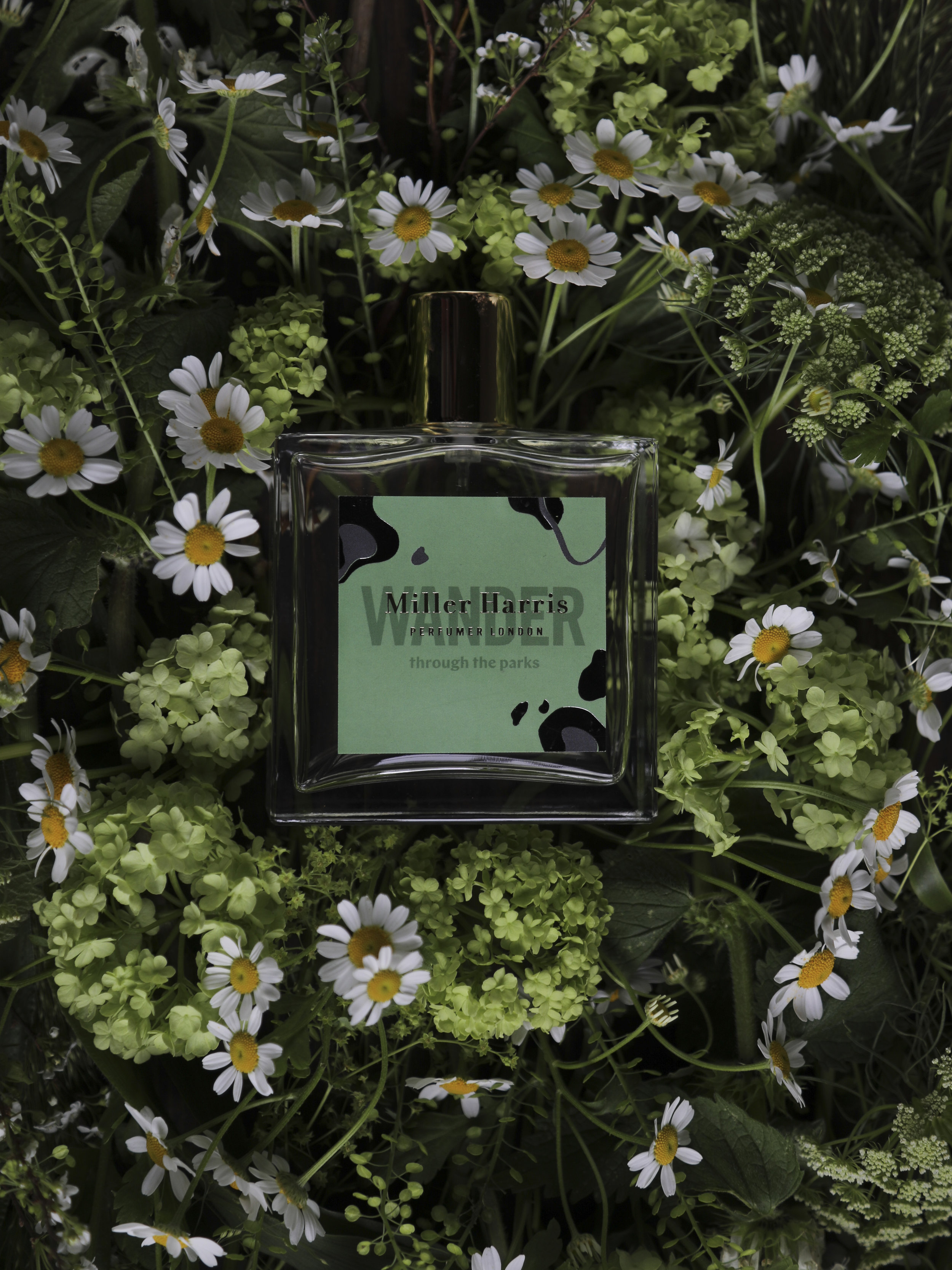 mcqueensflowers 4.jpg
