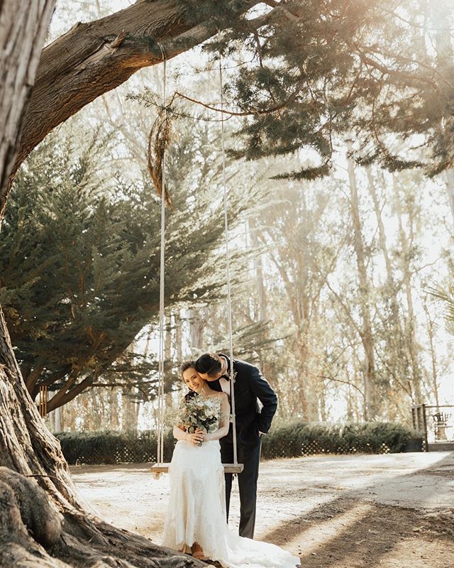 Raise your hand if you think every wedding venue should have a swing like this one 🙋🏼‍♀️ . . . . . . #warmradandfree #belovedstories #bigsurwedding #loveandwildhearts #radlovestories #authenticlovemag #dirtybootsandmessyhair #radstorytellers #moonlightdaydreamers #adventurouslovestories #weddingphotographer #photobugcommunity #epicloveepiclife #loveherwildly #oarsandbeanies #wildloveadventures #justalittleloveinspo #wildhairandhappyhearts #picoftheday #californiawedding #untamedwildandfree #couplescollective #loversgettinglost #wildrootcollective #delightfulstories #adventurousstorytellers #radcouples #engagementphotographer