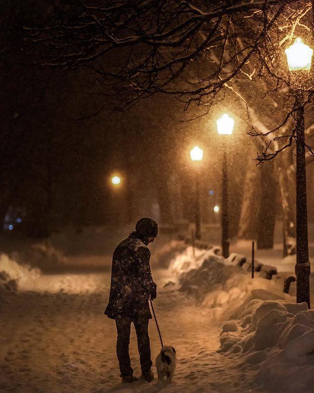 Bonne nuit MTL ▪️🔲▪️ Have a good night MTL • • • • • • #montreal #explorecanada #mtlmoments #ilovemontreal #montrealworld #mtlblog #livemontreal #montrealmoments #montrealcity #winter #winterwonderland #mtlblog #montrealstop #narcitymontreal #montreal_gallery #explorequebec #clicquebec #mtlprodigies #thismtl #mtl #streetsof514 #moodymontreal #cbcmtl #jaimemtl #mtliconic #montreal_online #topmontrealphoto #dailyhivemtl #vieuxmontreal #passionmtl
