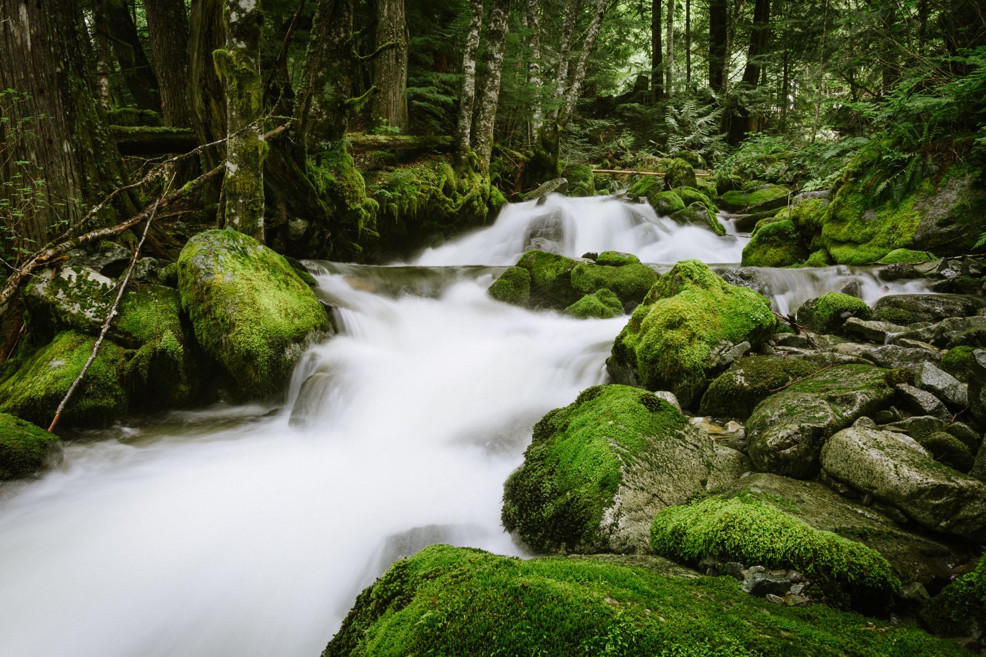 Squamish Creeks