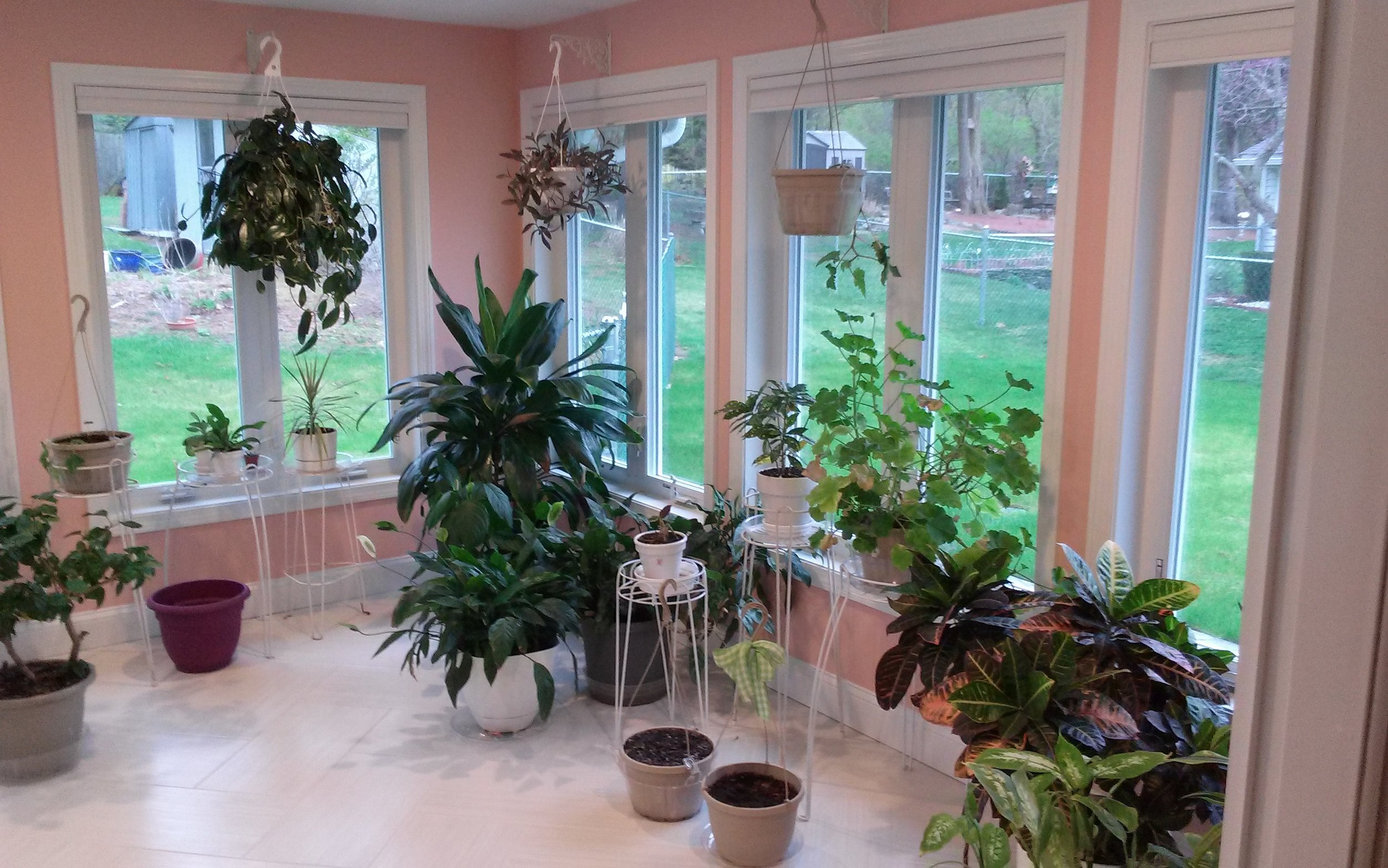 Sunroom (8).jpg