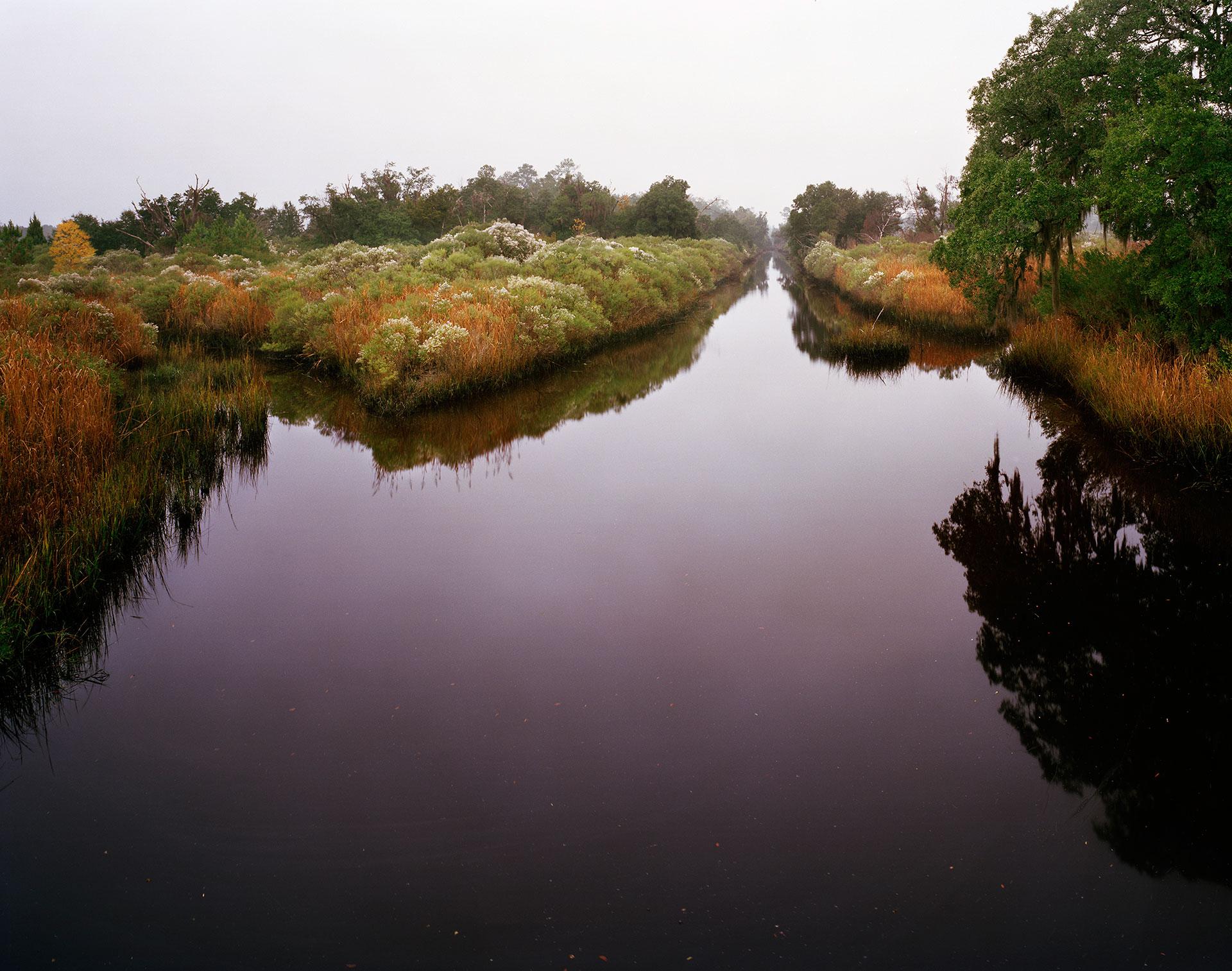 Canal in Fog, Near Highway 17