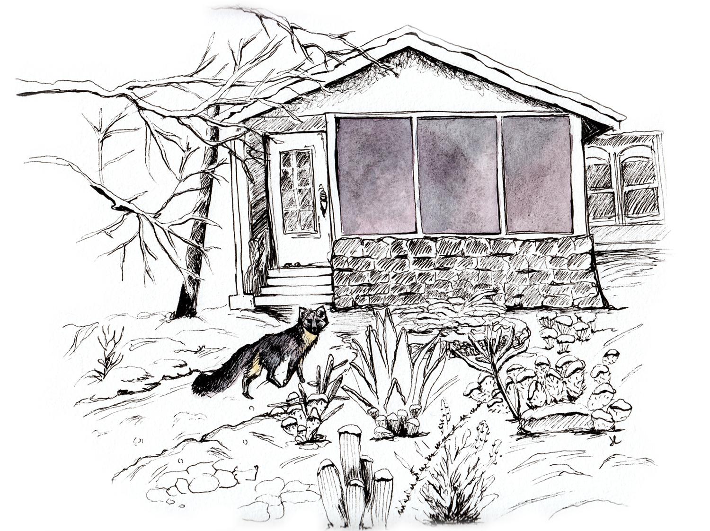 Nora House Fox-ink.jpg