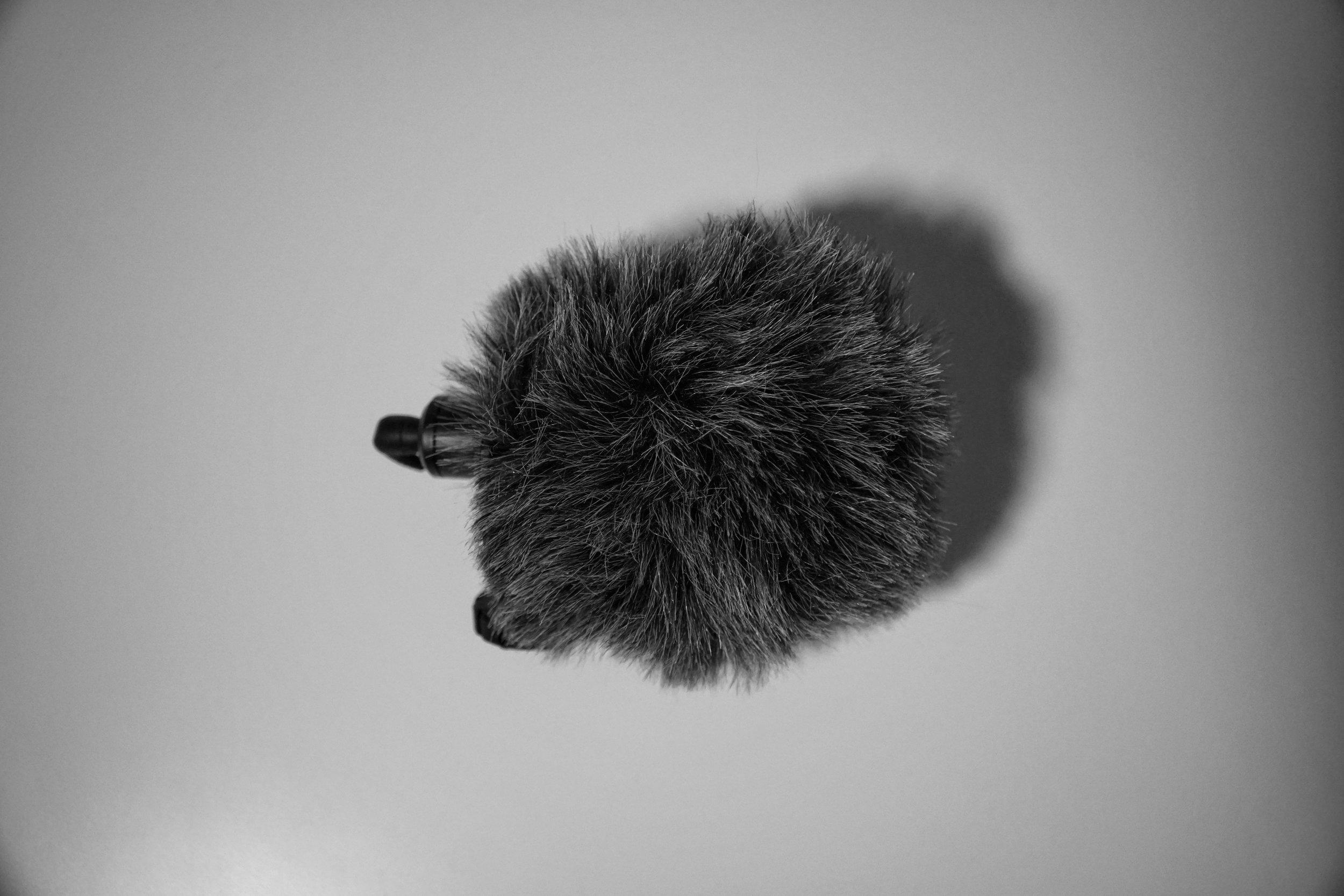RØDE Microphone -
