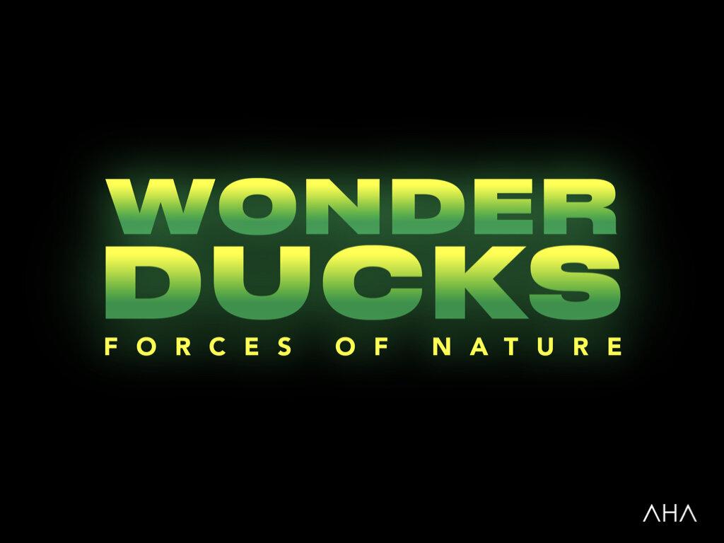 WonderDucks copy.020.jpeg