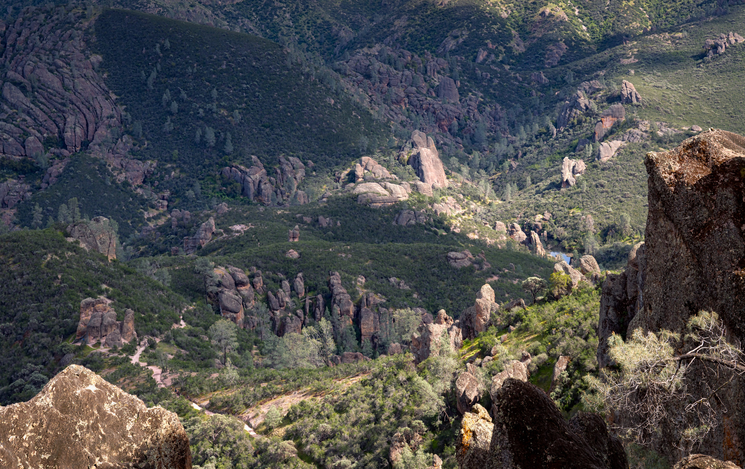 Pinnacles3views (3 of 3).jpg