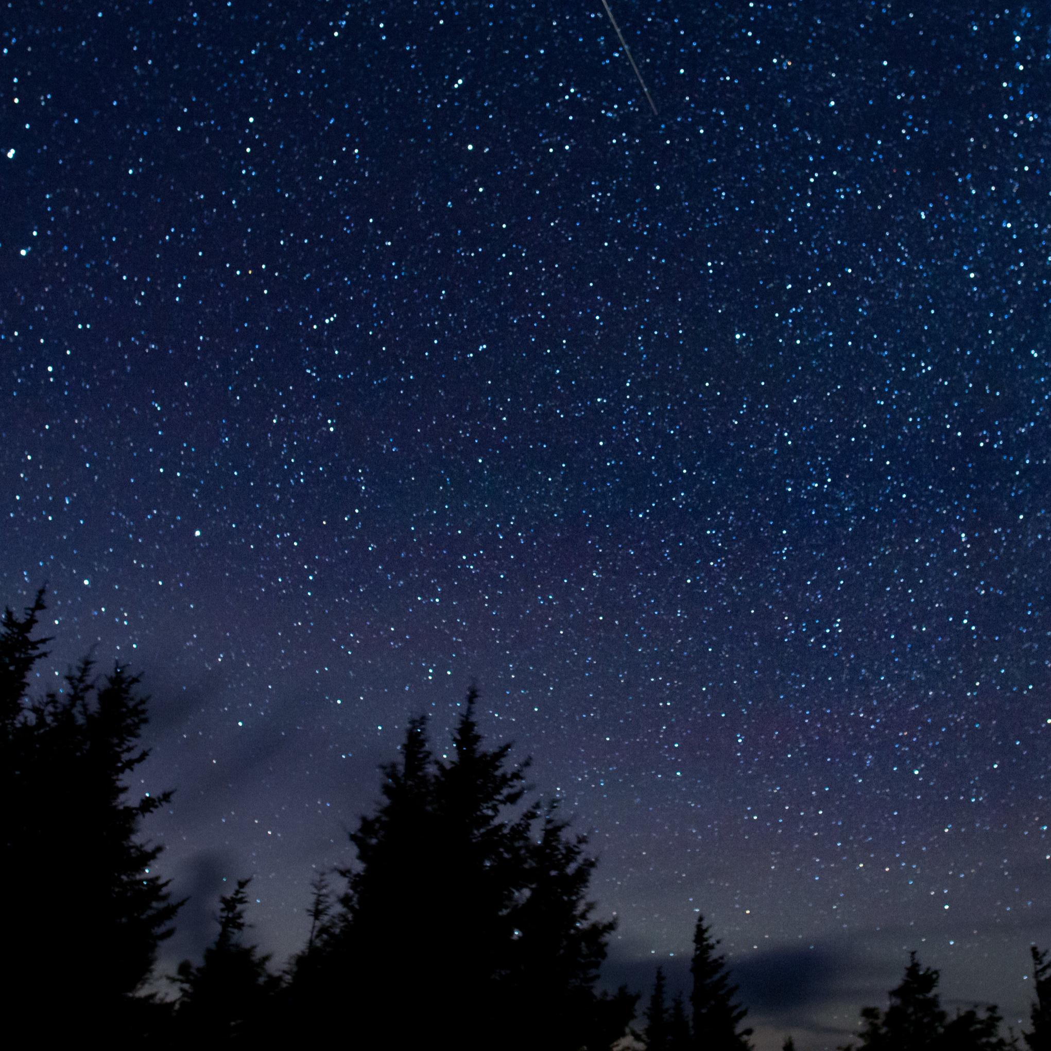Perseid+Meteor+Shower.jpg