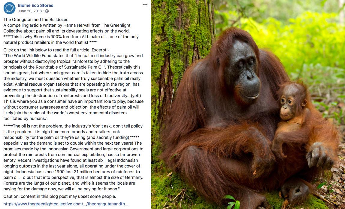 orangutanandbulldozer.jpg