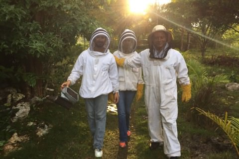 Our People - Little Island Honey was born out of love for nature, our planet, bees, and our people. We have a very team that is extremely passionate about pure honey and we cannot wait to share this passion with you. Learn more about us!