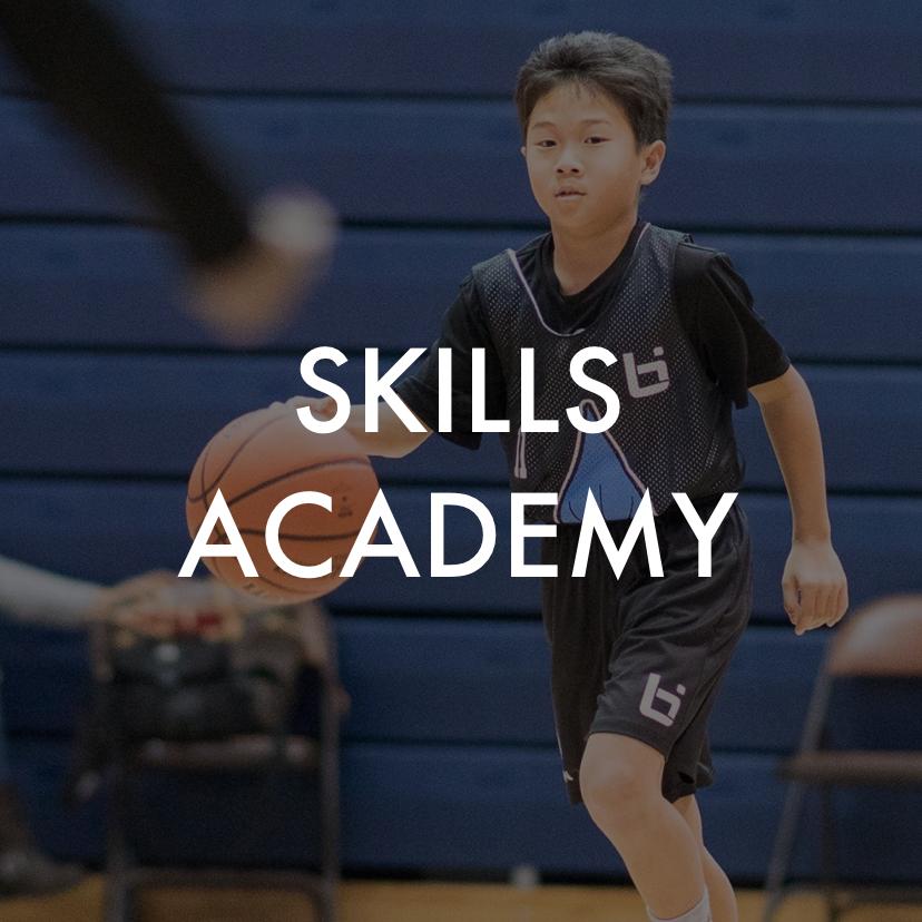 SkillsAcademy.png