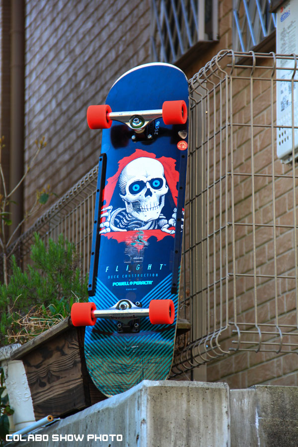 Powell Peralta 36 Flight-215indys-burnedbutgoodSNAKES--5.jpg