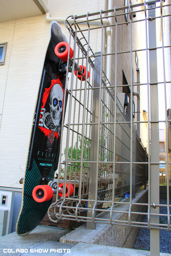 Powell Peralta 36 Flight-215indys-burnedbutgoodSNAKES--4.jpg