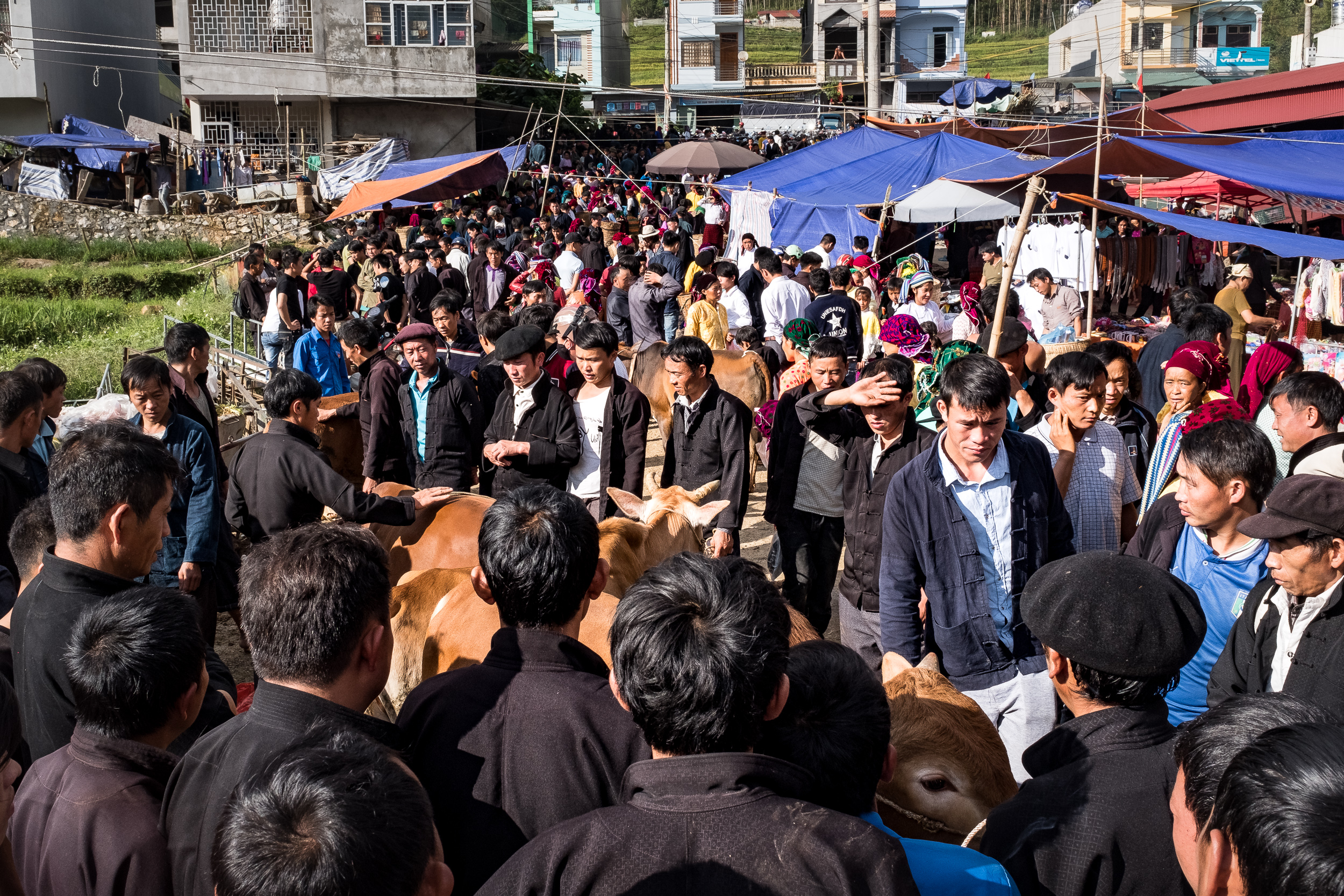 Large crowd gathered in Dong van minority market in Northern Vietnam