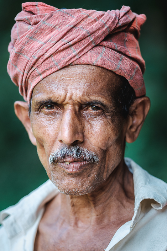 A farmer in the mountainous region of Sri Lanka - Enhance Details applied.